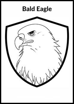 Bald Eagle Page Thumbnail
