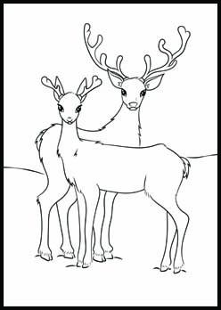 Free Christmas Coloring Page | Reindeer